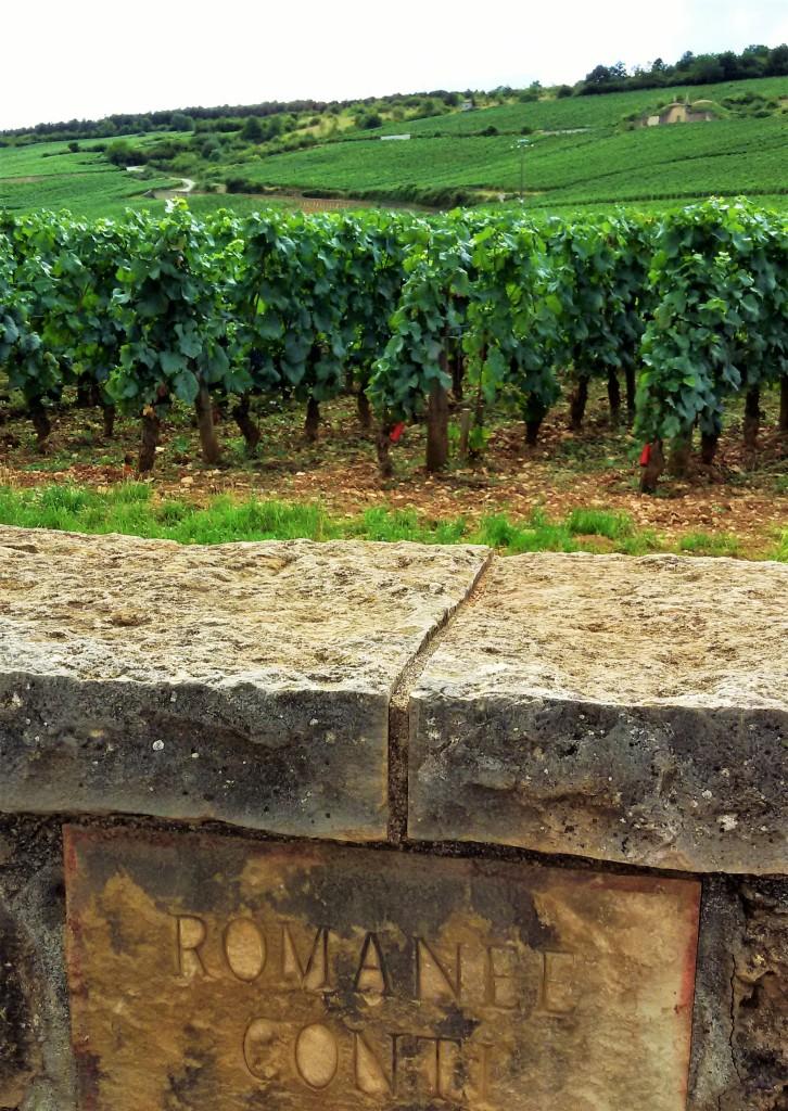 A placa que identifica o mítico vinhedo