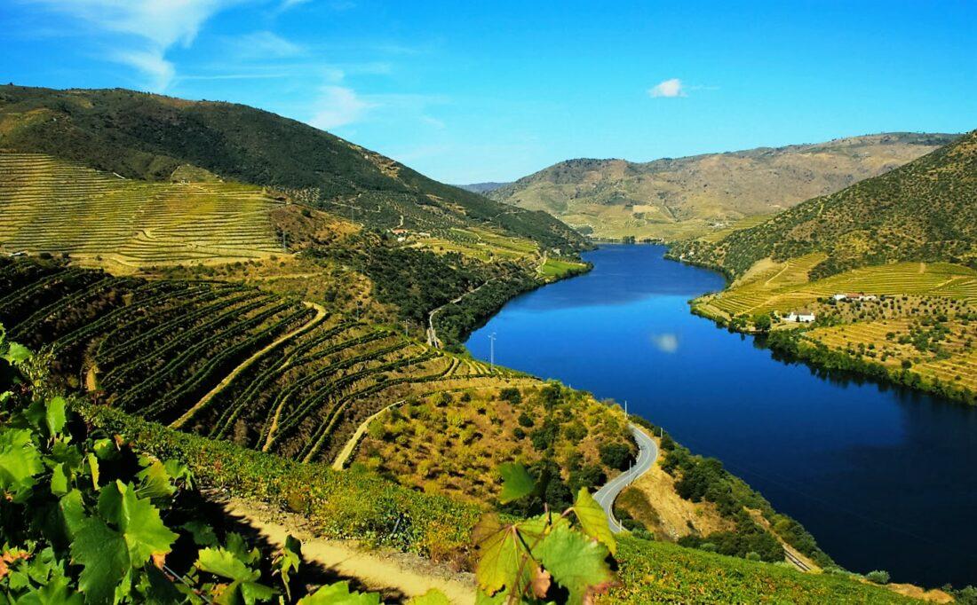 Partilhar os vinhos portugueses com o mundo