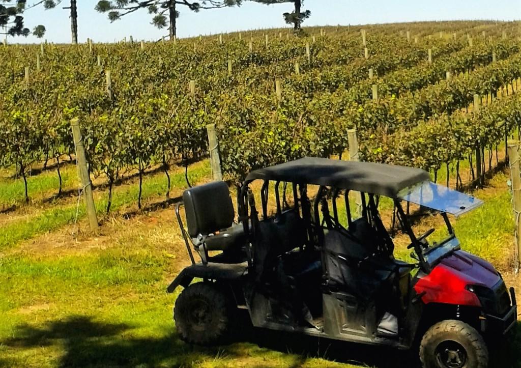 O 4x4 no qual os visitantes podem percorrer boa parte dos 70 hectares do terreno da vinícola