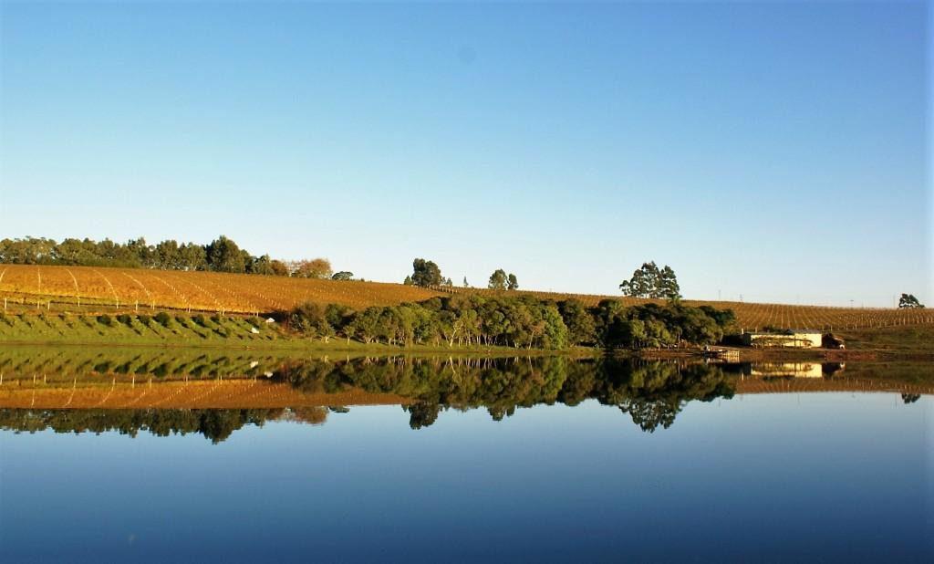 A vinícola tem 200 hectares de terra em Encruzilhada do Sul, de onde sai boa parte de sua produção (foto: divulgação)