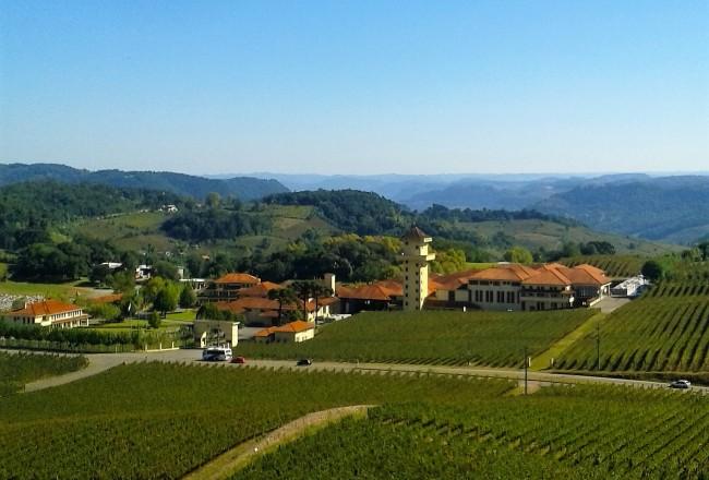 Miolo: vinícola integrada à paisagem do Vale dos Vinhedos é grande atração turística local
