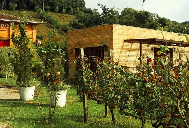 Vinhos com identidade própria e produto 'top' que é fruto de parceria com a Itália