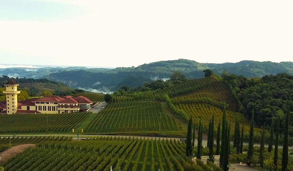 Vista a partir do Spa do Vinho, hotel que fica rodeado por vinhedos da Miolo (ao fundo)