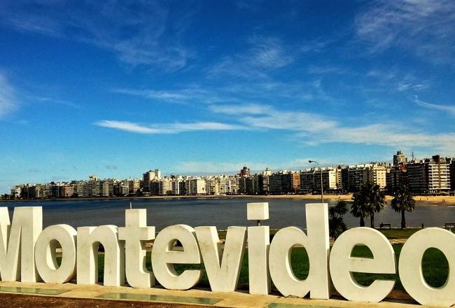País vem alcançando um lugar cada vez mais nobre na vinicultura sulamericana