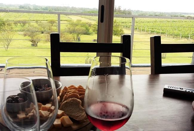 Artesana: vista que se tem da sala de degustações da vinícola é de tirar o fôlego