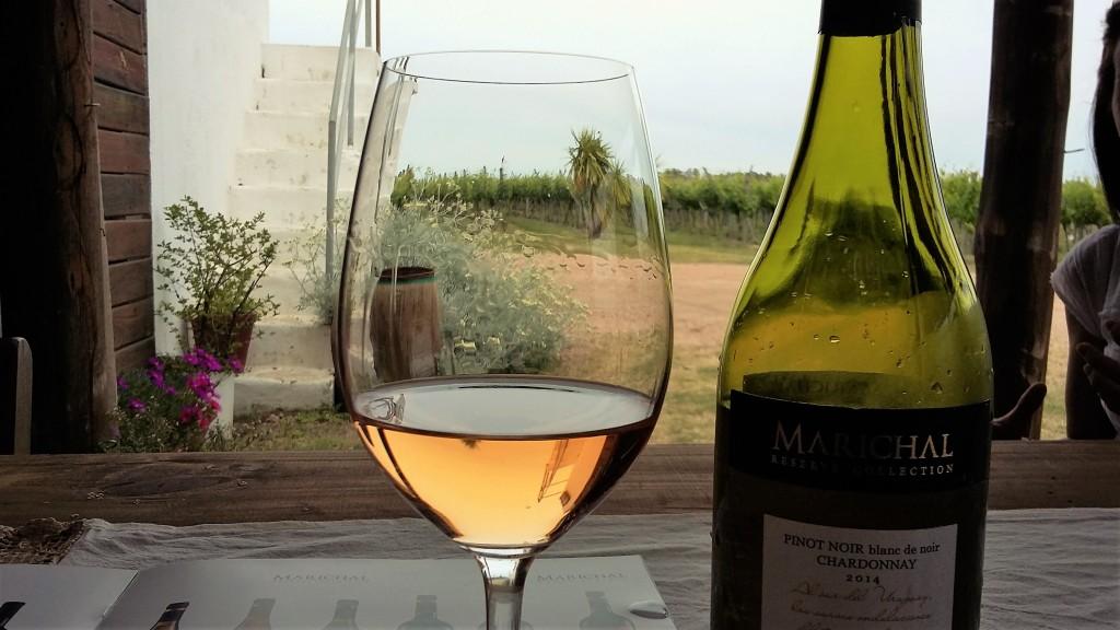 Vinho branco alaranjado: incrível combinação de pinot noir 'blanc de noir' com chardonnay