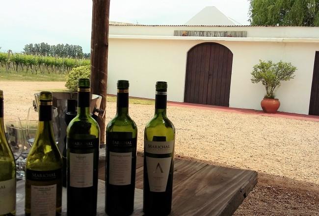 Vinícola é uma das que melhor expressa a tradição familiar que caracteriza as bodegas uruguaias