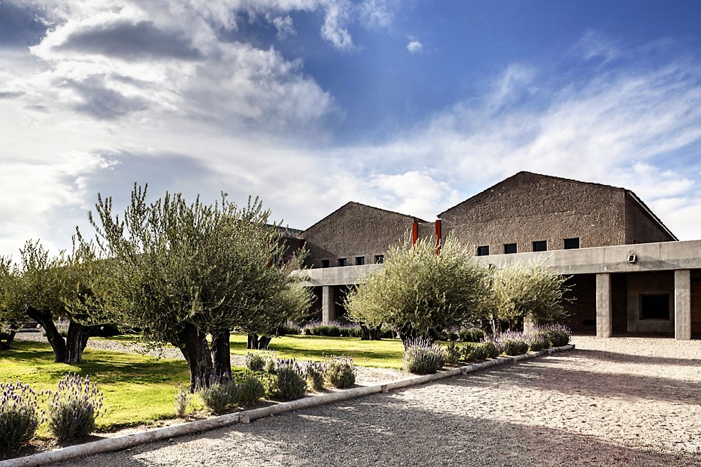 A sede da vinícola vista de outro ângulo, com os arbustos típicos da região (foto: divulgação)