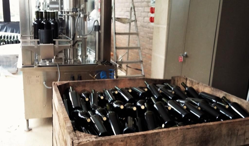 Linha de produção: garrafas que tinham acabado de receber a rolha