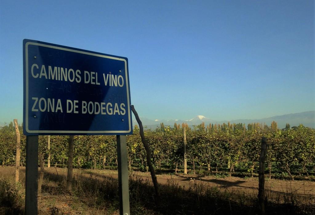 Seja nas grandes rodovias ou em pequenas estradas de terra batida como esta, há sempre vinhedos e, ao fundo, a majestosa Cordilheira dos Andes