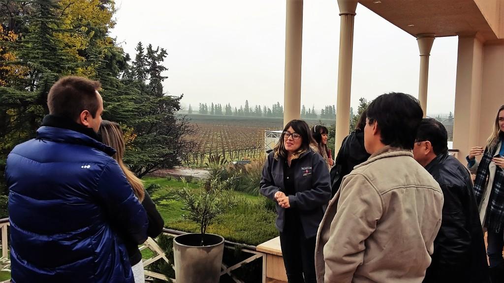 Visita é recheada de histórias e termina com degustação de 4 vinhos