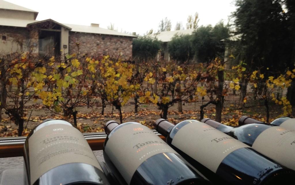 Garrafas de vinhos da linha Tomero, a mais conhecida da vinícola, exposta da loja com vista para parte dos vinhedos