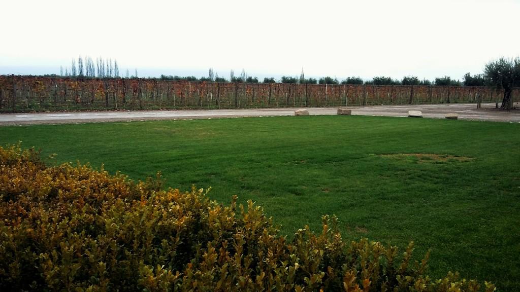 Paisagem à frente da sede da bodega: vinhedos das cepas malbec, cabernet sauvignon e bonarda