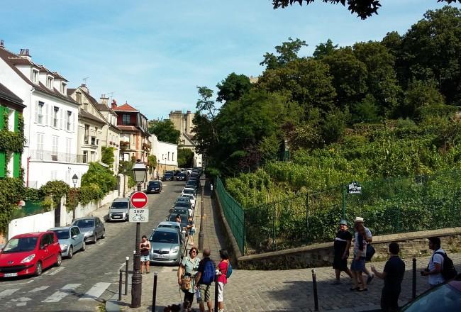 Como quase tudo em Paris, pequeno vinhedo é um pedaço do passado no meio do presente