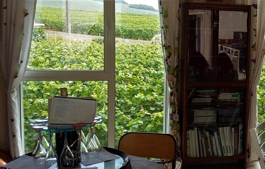 Através da sala utilizada para as degustações, a vista dos vinhedos de chardonnay da família Chardonnet