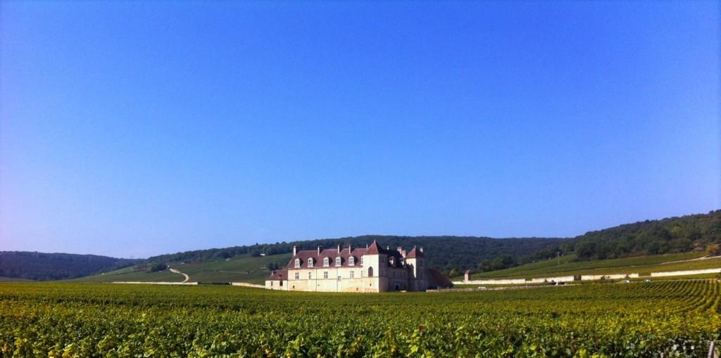 De longe, o Château du Clos de Vougeot parece flutuar na extensa plantação de uvas