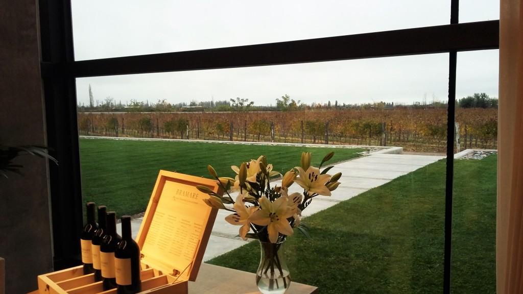 Vinhedos em tons de outono observados de dentro da sala de degustação da bonita bodega Viña Cobos
