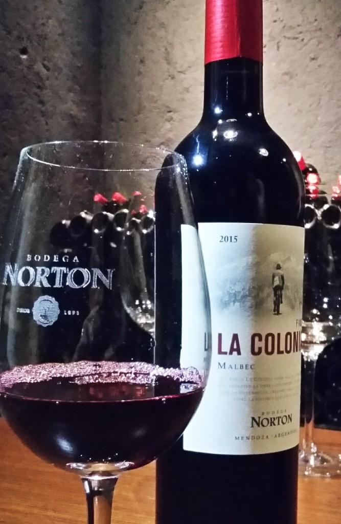 Norton visita - vinho 1 Colonia