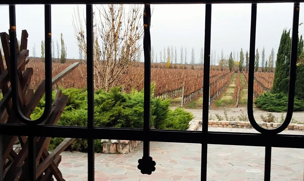Vista de uma parte dos 70 hectares de vinhedos que rodeiam a sede da Andeluna, em Tupungato, no Valle de Uco