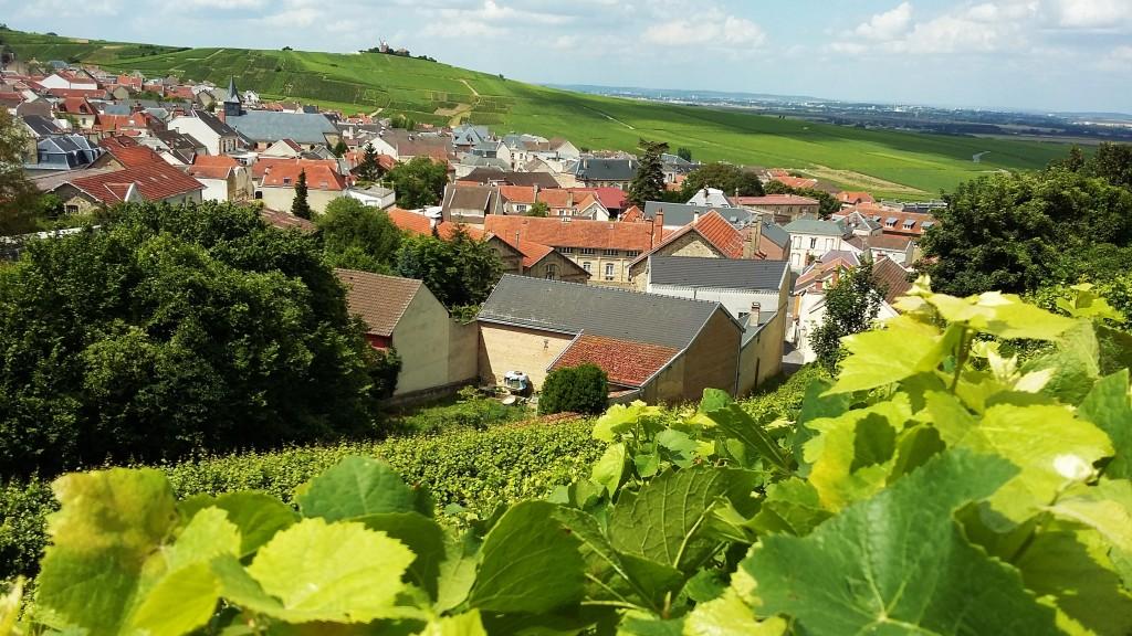 Ao longo de toda a estrada entre as cidades de Reims e Epernay, pequenas vilas estão rodeadas de vinhedos