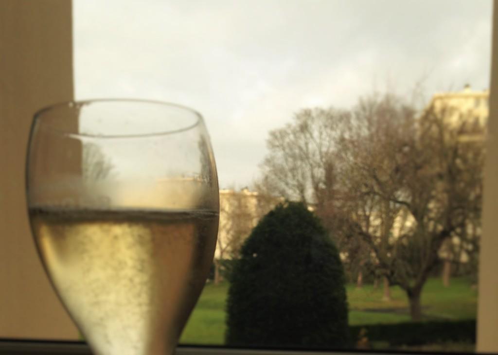 Champanhe é degustado tendo-se ao fundo a vista de parte da propriedade